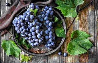 Виногралная гроздь